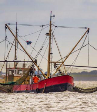 dutch-shrimp-fishing-cutter-vessel-PA7SUML
