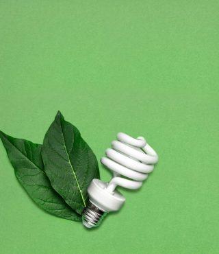 eco-bulb-P8EQ7VP-1024x1024