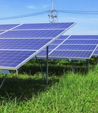 solar-panels-on-green-grass-PZZELL9-1024x683